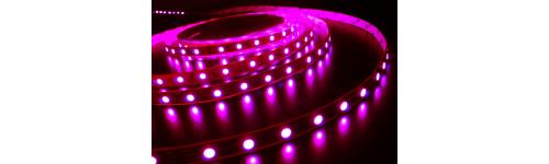 5050 Flexible LED Strip